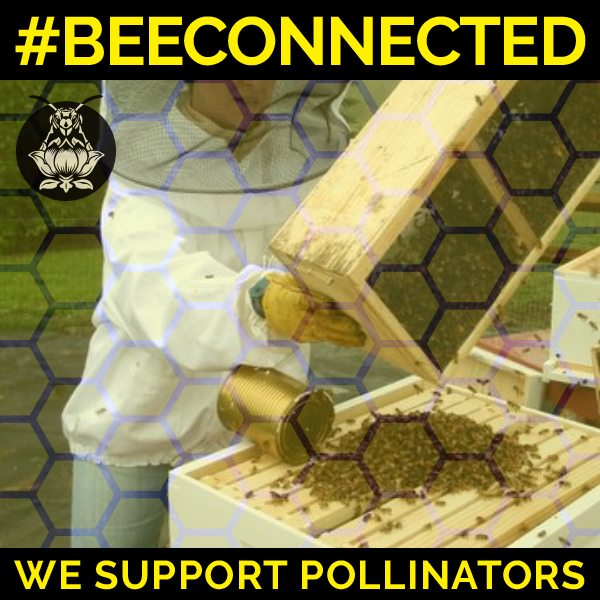 #beeconnected Logo